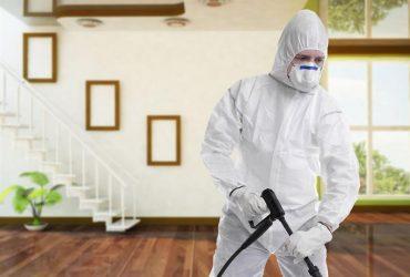شركة رش مبيدات بالطائف بخصم 40%