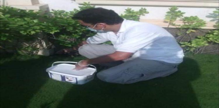 طريقة عمل عجينة الصراصير بالبيت